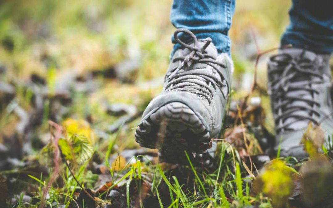 Meerwaarde van wandelcoaching